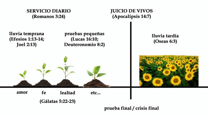 PlantasCelestiales
